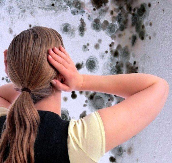 Следствие неисправности вентиляции – плесень и грибок