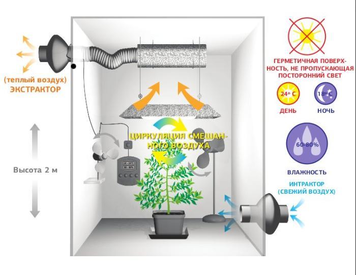 Схема вентиляции в гроубоксе