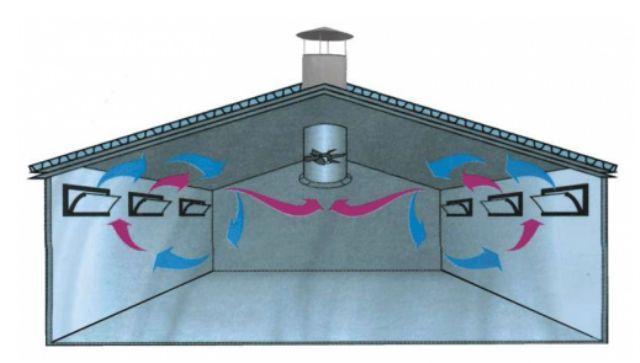 комбинированная вентиляция в курятнике