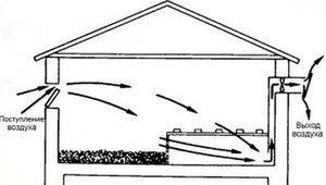 Схема вентиляции в курятнике зимой