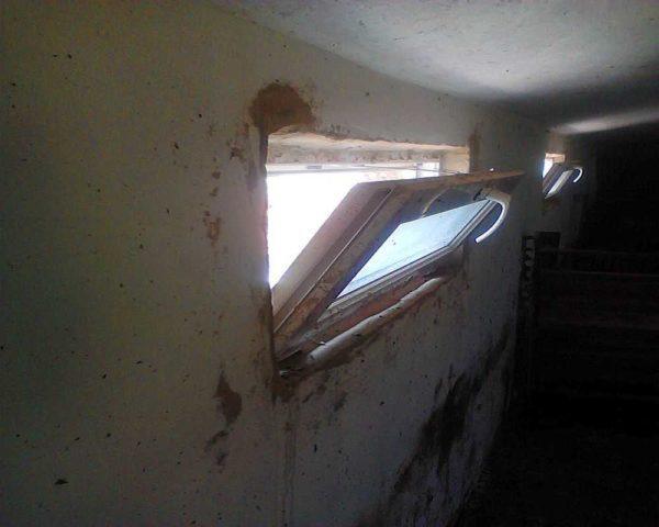 Металлопластиковые окна уже ставят в свинарники