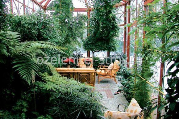 зимний сад план