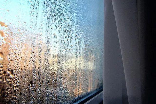 Повышенная влажность в плохо вентилируемых помещениях создаёт целый комплекс весьма серьезных проблем