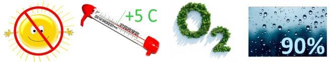 Климатические условия для подвала