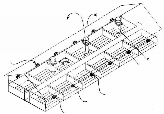 Схема организации воздухообмена в животноводческом комплексе